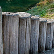 Log Handrail Art Print