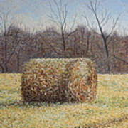 Lone Haybale Art Print by Patsy Sharpe