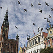 Long Market With Pigeons, Town Hall Art Print by Keenpress