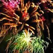 Longwood Fireworks Art Print