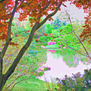Looking Through The Trees  Art Print