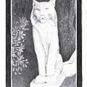 Los Gatos Cat Statue Leo Art Print