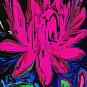 Lotus 5 Art Print