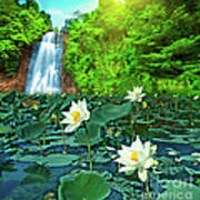 Lotus And Waterfall Art Print