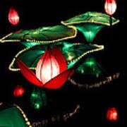 Lotus Lanterns 4 Art Print