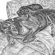 Lounge Lizards - Doberman Pinscher Dog Art Print Art Print by Kelli Swan
