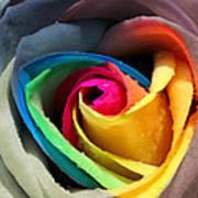 Lover's Rose Art Print