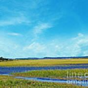 Low Country Marsh Art Print