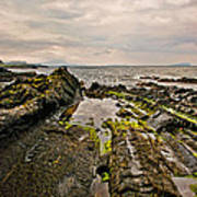 Low Tide Rocks Art Print