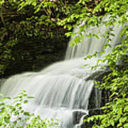 Loyalsock Waterfall Art Print