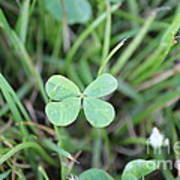 Luck To All Art Print