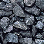 Lumps Of High-grade Anthracite Coal Art Print