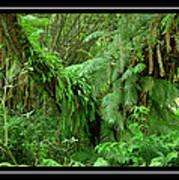 Lush Green Landscape Art Print