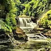 Lush Lower Falls Art Print