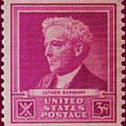 Luther Burbank Postage Stamp Art Print