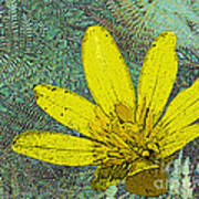 Magic Fern Flower 02 Art Print