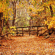 Magical Autumn Print by Cheryl Davis