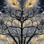 Magical Tree Art Print