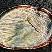 Magical Tree Stump Art Print