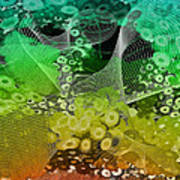 Magnification 3 Art Print by Angelina Vick