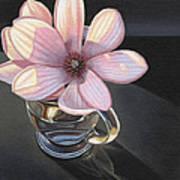 Magnolia Blossom In Glass Mug Art Print