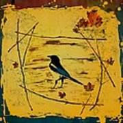 Magpie Framed In Maple Art Print by Carolyn Doe