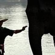 Mahut With Elephant Art Print