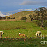 Mallerstang Dale In Cumbria Uk Art Print