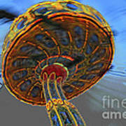 Manic Wheel Art Print