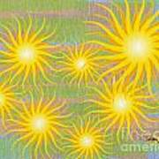 Many Suns Art Print