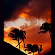 Maui Breeze Art Print