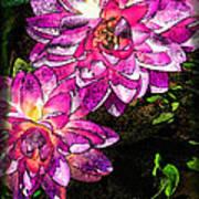 Maui Pink Garden Art Print