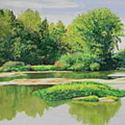 Maumee Reflection Art Print