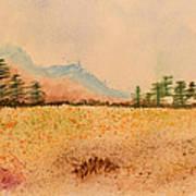Meadow Wildflowers - Watercolor Art Print