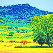 Meadows And The Cedar Breaks Art Print