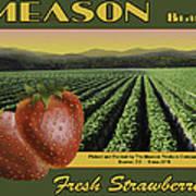 Meason Strawberries Art Print