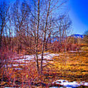 Melting Snow In South Platte Park Art Print