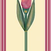 Merlot Calla Lily Banner Art Print