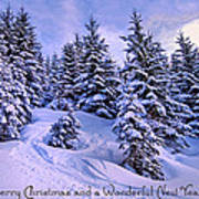 Merry Christmas And A Wonderful New Year Art Print