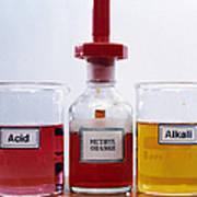 Methyl Orange Indicator Art Print