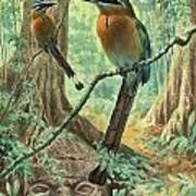 Mexican Motmots Are Perched On Jungle Print by Walter A. Weber