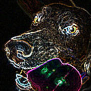 Miko - Glow Art Print