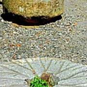 Mill Stones Art Print