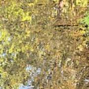 Mirroring Autumn Art Print