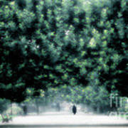 Misty Parisian Park 2 Art Print