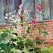 Mixed Hollyhock Print by Peter Sit