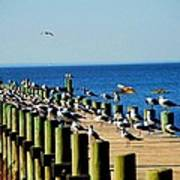 Mobile Bay Meeting Of The Minds Art Print
