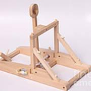 Model Catapult Art Print