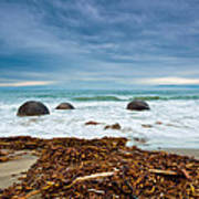 Moeraki Boulder East Coast Of South New Zealand Art Print