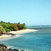 Molokai Shore Art Print